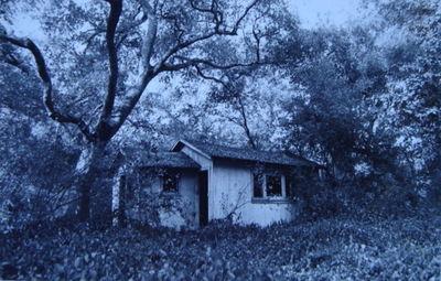 Faeriehouses