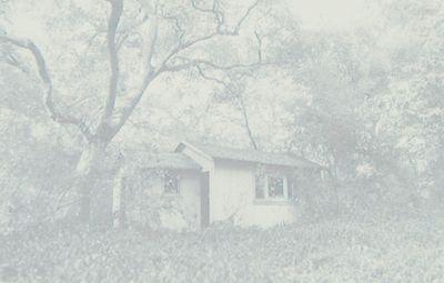 Faeriehouses2