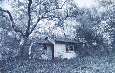 Faeriehouses3